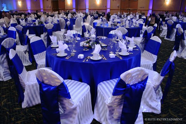 photo 3 of Elite Chair Covers