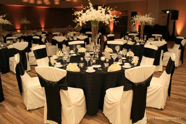 photo 5 of Elite Chair Covers