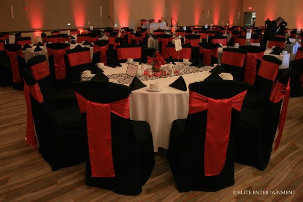 photo 6 of Elite Chair Covers
