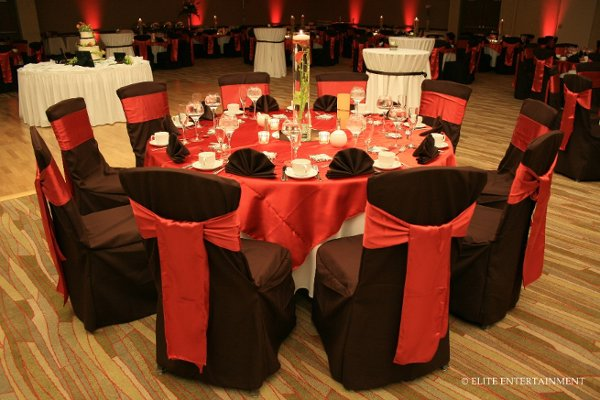 photo 8 of Elite Chair Covers
