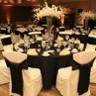Elite Chair Covers