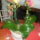 130x130_sq_1368650258890-floralelement101