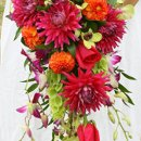 130x130_sq_1288992317601-dahlaiweddingbouquet2copy