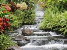 220x220 1233336964234 waterfall