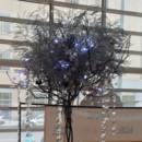 130x130 sq 1416517901228 ice ball wire tree 2c 110114