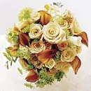 130x130_sq_1233438849812-weddingbouquet2