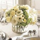 130x130_sq_1233438930281-weddingcenterpiece3