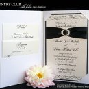 130x130 sq 1320368223305 silkfolioinvitation