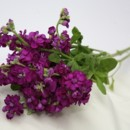 130x130 sq 1384324867669 450 3 stems purple stoc