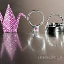 130x130 sq 1355320595911 trevorlarissaweddings14