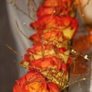130x130 sq 1233720348062 roses