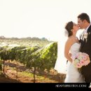 130x130 sq 1281368806064 jillianmichaelbrittondallasweddingdelaneyvineyards025