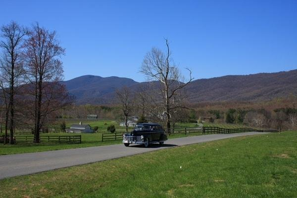 photo 7 of Albemarle Vintage Limousine