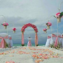 220x220 sq 1417971398749 florida beach wedding package 7
