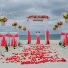 220x220 sq 1417971409956 florida beach wedding package 15