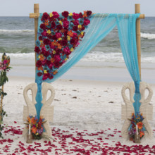 220x220 sq 1512765713017 tropical beach wedding in florida 1