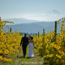 130x130 sq 1387582244422 0023 moscastudio gorgecrestvineyard weddingphotogr