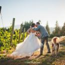 130x130 sq 1387582421646 0138 moscastudio gorgecrestvineyard weddingphotogr