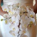130x130 sq 1234224143871 flowers06