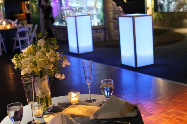 photo 19 of A Gala Affair-Event Design & Decorating