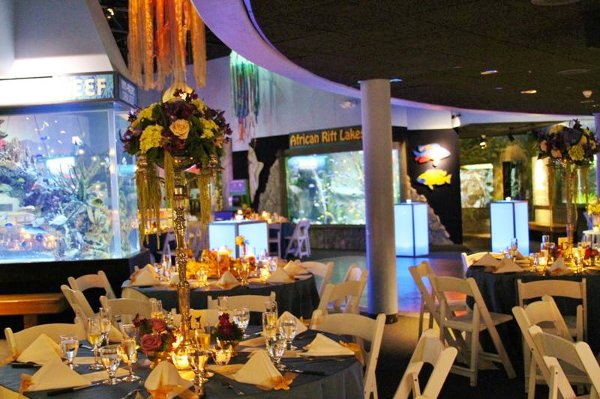 photo 21 of A Gala Affair-Event Design & Decorating