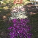130x130 sq 1365022905701 petal path