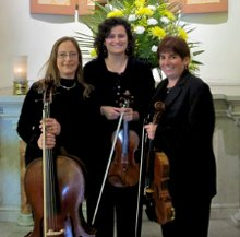 Amaryllis Ensemble photo
