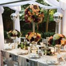 130x130_sq_1234564576831-weddingbiege