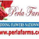 130x130 sq 1338606299683 weddingflowersnationwidewww.perlafarms.com