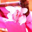 130x130 sq 1263863561440 orchidchairaccent