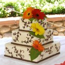 130x130 sq 1262756996805 chocolateivyweddingcake