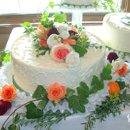 130x130_sq_1268787154597-flowers11phillips