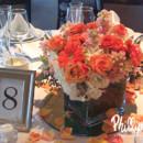 130x130_sq_1365032347744-orange-celebration