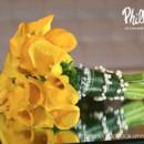 130x130_sq_1365032402837-yellow-callas