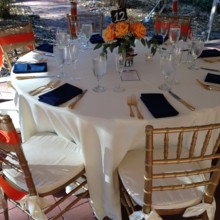 220x220 sq 1423676136312 orange and blue table
