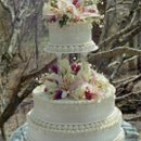 130x130_sq_1235411794359-outdoorweddingcake