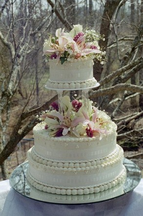 wedding cakes athens ga athens wedding cakes reviews for cakes 23817