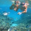 130x130 sq 1388855076154 snorkeling tour