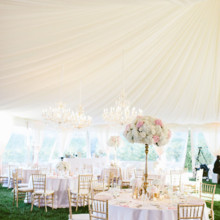 220x220 sq 1478807967235 blush and ivory reception tent