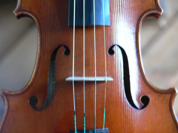 photo 7 of Perfect Harmony String Ensemble