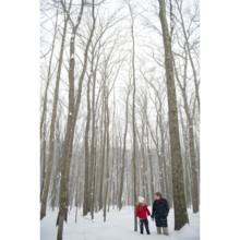 220x220 sq 1402509579904 engagementamtholland