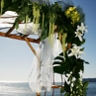 Shell Beach Floral Design by Amanda