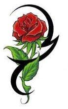 220x220 1235785646307 red rose 2