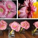 130x130 sq 1304529046445 ellenborersflowers