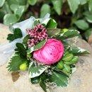 130x130 sq 1308710727819 pinkpeonycorsagewithwaxflower