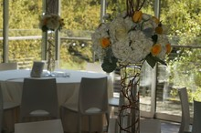 220x220 1397680758856 yellow grove wedding