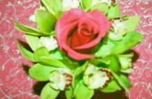 220x220 1236389139901 rosegreenorchid2