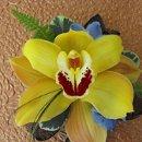 130x130 sq 1318532147677 yelloworchiddelphiniumcorsage