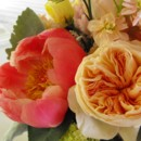 130x130 sq 1374886687884 close up juliette rose and coral charm peony