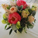 130x130_sq_1374886700234-coral-charm-peony-dusty-miller-and-garden-rose-centerpiece